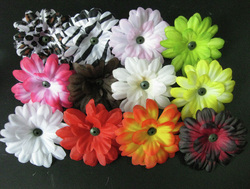 2 Daisy Grab Bag-